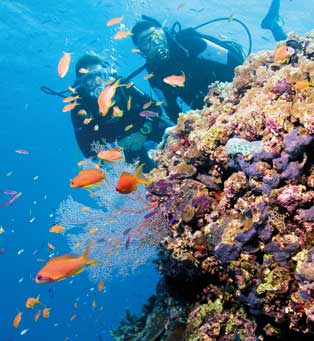 places-great_barrier_reef-cairns_tropical_north