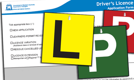 drivers-licence-midland