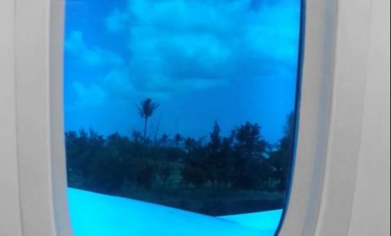 ウワサの機内食、ハワイ行きJALで堪能しましたよ~