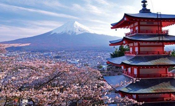 Google-Image-Japan