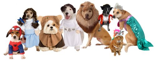 halloween-dog-costumes1