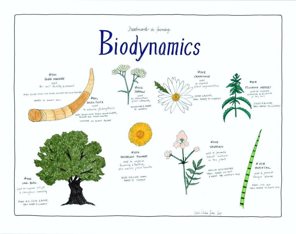 biodynamicsposter (1)